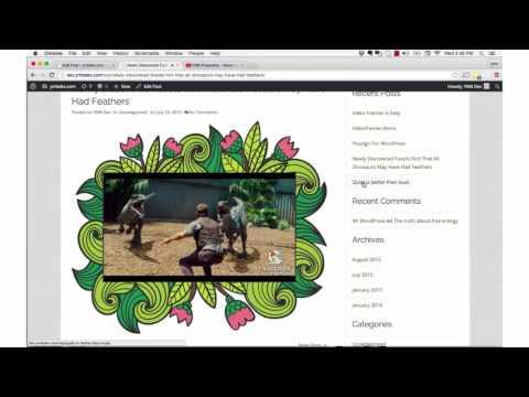 Embedding Videos In Designer Frames