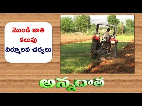 Off Season Practices for Weed Control || ETV Annadata