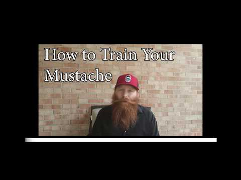 How to Train Your Mustache | How to Separate Mustache from Beard