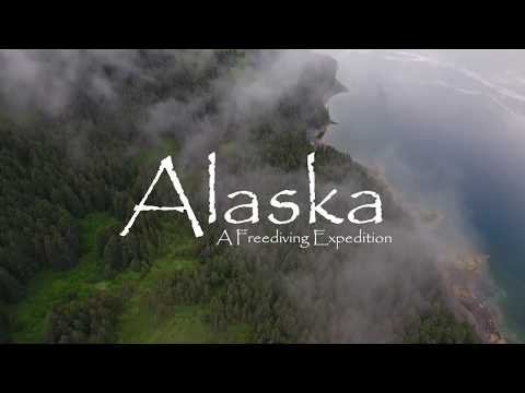 SPEARFISHING ALASKA 2017 - Halibut, LingCod, Rocks and Salmon with Bamboo Reef