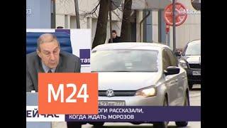 Москвичей ждет теплая и дождливая погода в выходные - Москва 24