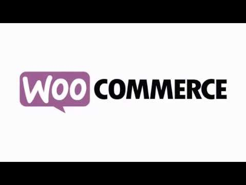 How to Accept PayPal and Credit Card Payments at Your WooCommerce Store