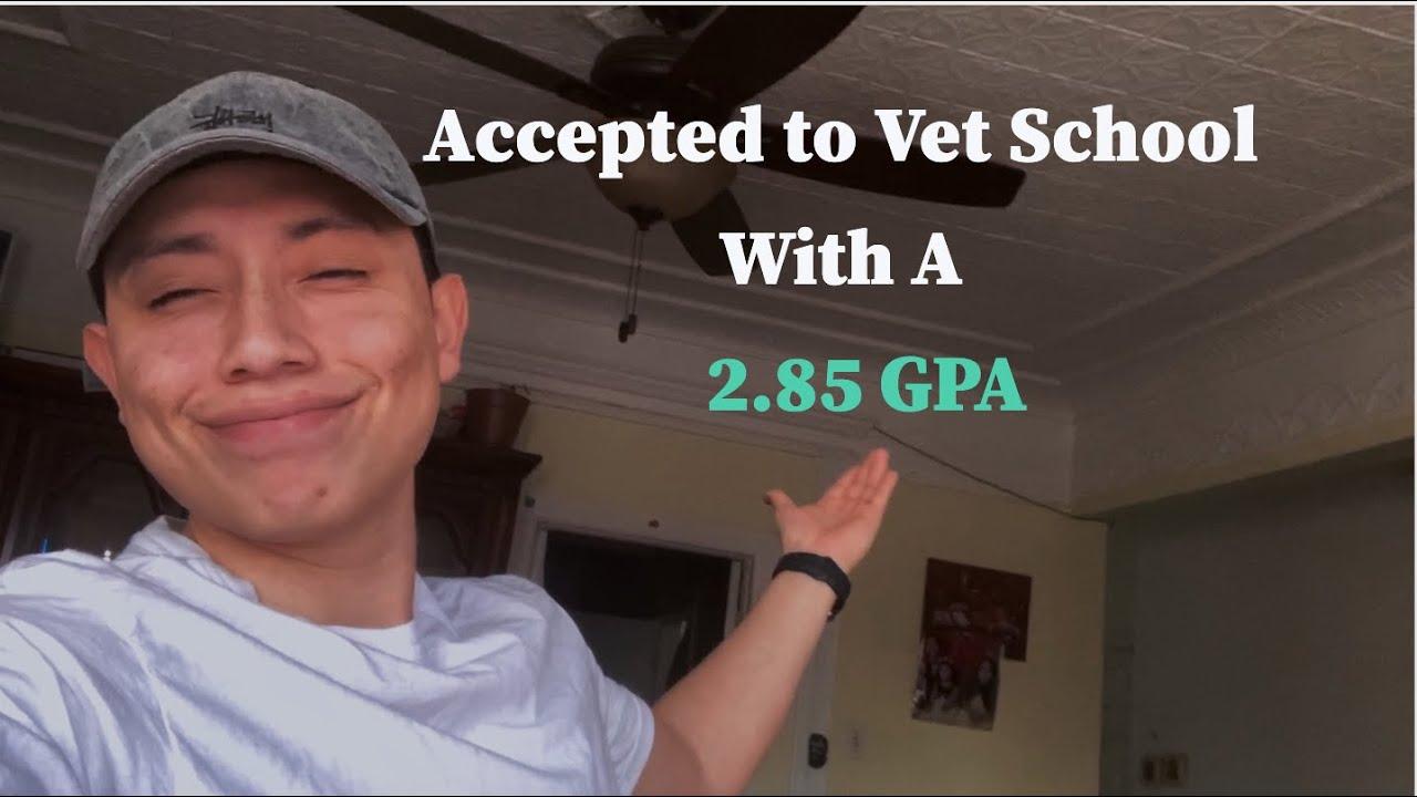 How I Got Into Vet School with 2.85 GPA!