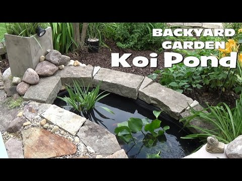 Small Backyard Garden Koi & Goldfish Pond - Setup