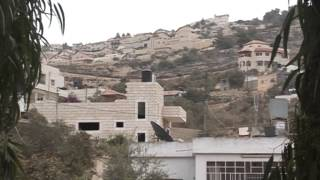 ينابيع فلسطينية - قطنة
