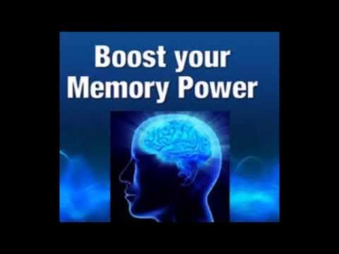 How Can You Improve Your Working Memory - Perform At A High Rate At Work Or School