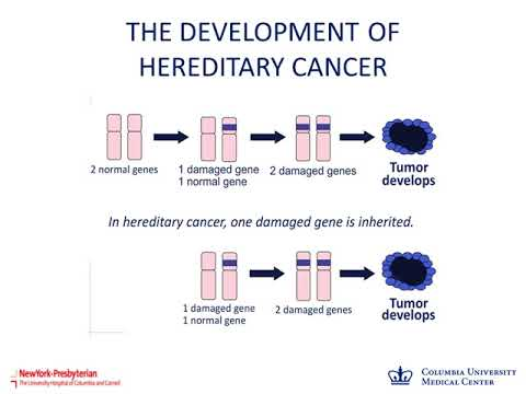 Webinar: Updates in Genetic Testing for Hereditary Breast and Ovarian Cancer February 15, 2018