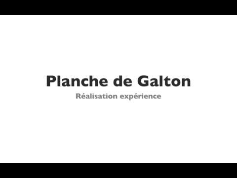 Planche de Galton - TPE Turgot 1ere S5