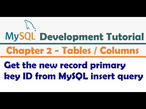 Get the new record primary key ID from MySQL insert query - MySQL Developer Tutorial