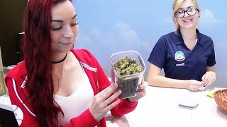 How To Legally Buy Weed Dispensary Walkthrough