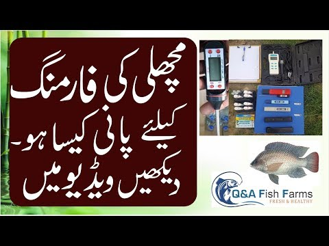 Introduction to Fish Farming. How to test water. In Hindi/Urdu with English subtitles video 3
