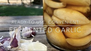 Super Easy, Ready to Use Garlic; Fearless Fermenting; Homesteading Family