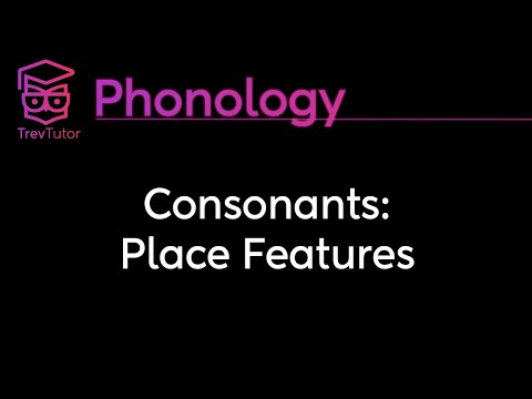 [Phonology] Consonant Place Features and Laryngeal Features