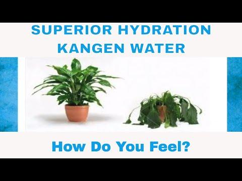 Superior Hydration Kangen Water