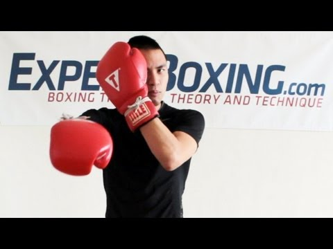How to See Punches Coming