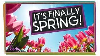 The Science of Spring!