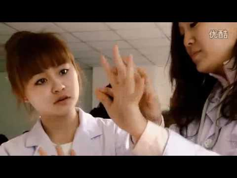 Welcome to Liaoning University of Traditional Chinese Medicine