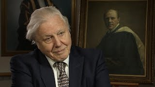 Sir David Attenborough - Memories of the University of Leicester