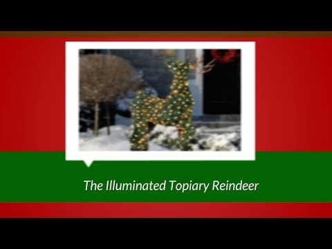 Reindeer Christmas Decorations - Outdoor Reindeer Decorations