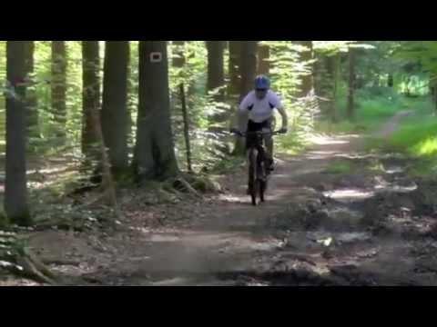 Musing Specter 9   29ER on the Trail