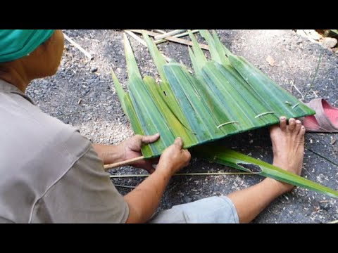 How to make Attap roof with palm fronds (thatched roof) 编织亚答叶