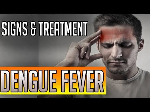 Dengue fever symptoms and treatment | Best Remedy And Natural Cure
