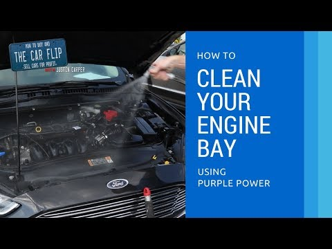 How to Clean Your Engine Bay using Purple Power