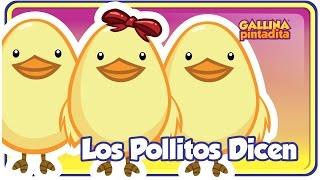 Los Pollitos Dicen - Gallina Pintadita - Oficial - Canciones infantiles para niños y bebés