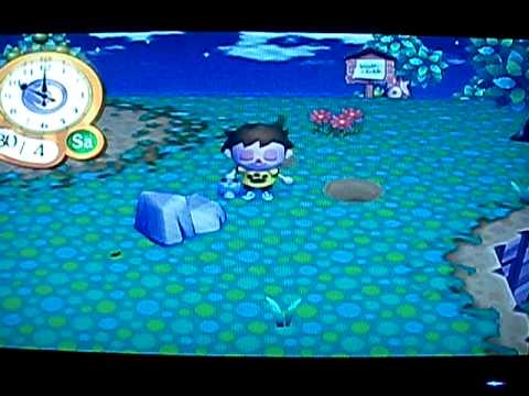 Animal Crossing Let's Go to the City - How to Catch a Pill Bug