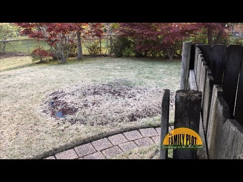 Q&A – How do I get rid of a hump in my yard?