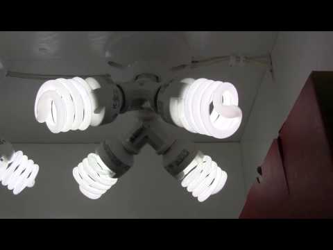 How to Build a 184 Watt CFL Grow Light for Overwintering Plants