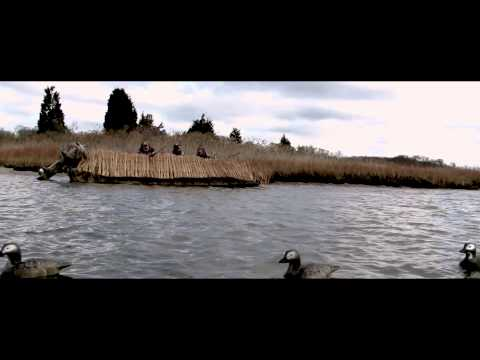 DIVER DUCK  SEADUCK HUNTING HD ACTION  HUNTING DIVERS
