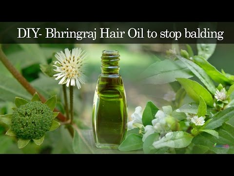 Hair Regrowth Oil | Anti-baldness Oil | Bhringaraj Hair Oil Preparation - DIY