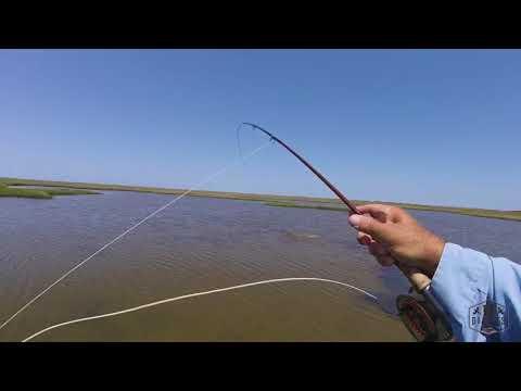 Fly Fishing Redfish | Gulf Coast Texas