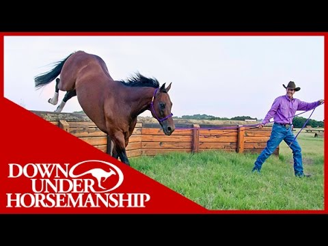 Clinton Anderson: How To Tie A Rope Halter - Downunder Horsemanship