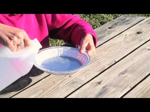Homemade Garden Groundhog Repellent : Great Gardening Advice
