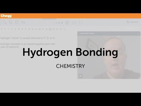 Hydrogen Bonding   Chemistry   Chegg Tutors