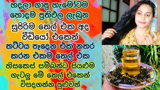 මම හදපු හොදම ප්රතිපල තියන සුපිරිම තෙල් එක How to Grow Long Thicken Hair With Curry Leaves