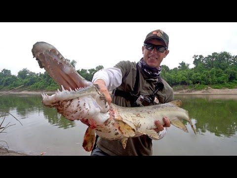 Searching for Giant Alligator Gar in Texas - ft. LakeForkGuy