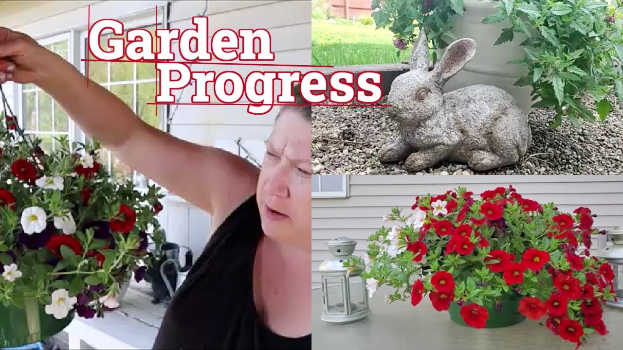 Garden Progress | Gardening 2021 Episode #2 | Trimming, Potted Flowers and the Dogs