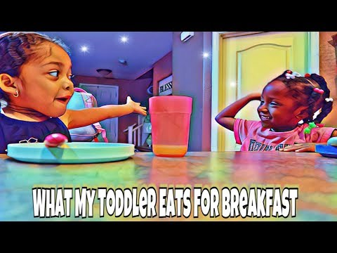 What My Toddler Eats For Breakfast \\ What She Ate \\ Before School