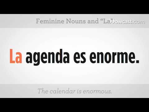 How to Use Feminine Nouns &