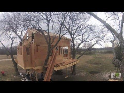 Waco, Texas Treehouse Timelapse   Treehouse Masters