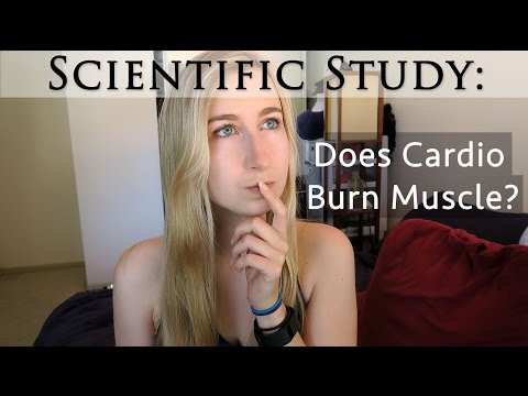 Does Cardio Burn Muscle & Hinder Strength Gains? | Fitness Science