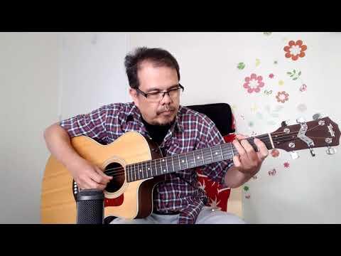 Bone vs Brass Bridge Pins Comparison on Taylor 214ce Acoustic Guitar