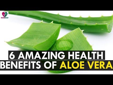 6 Amazing Health Benefits of Aloe Vera