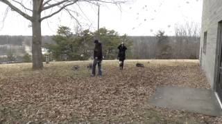 Aerokinesis Leaf Tornadoes (Very Fun Video)