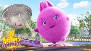 SUNNY BUNNIES - Cake Capture   Season 2   Cartoons for Children
