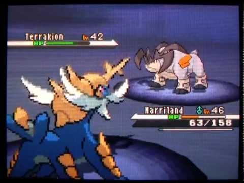 White 67: Legendary Pokemon Terrakion
