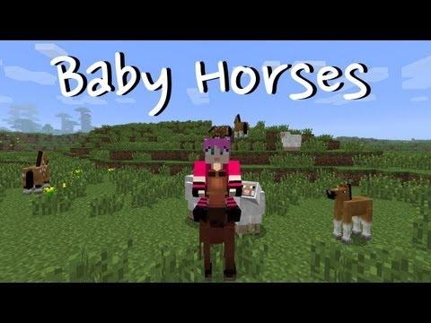 Minecraft: Baby Horses!